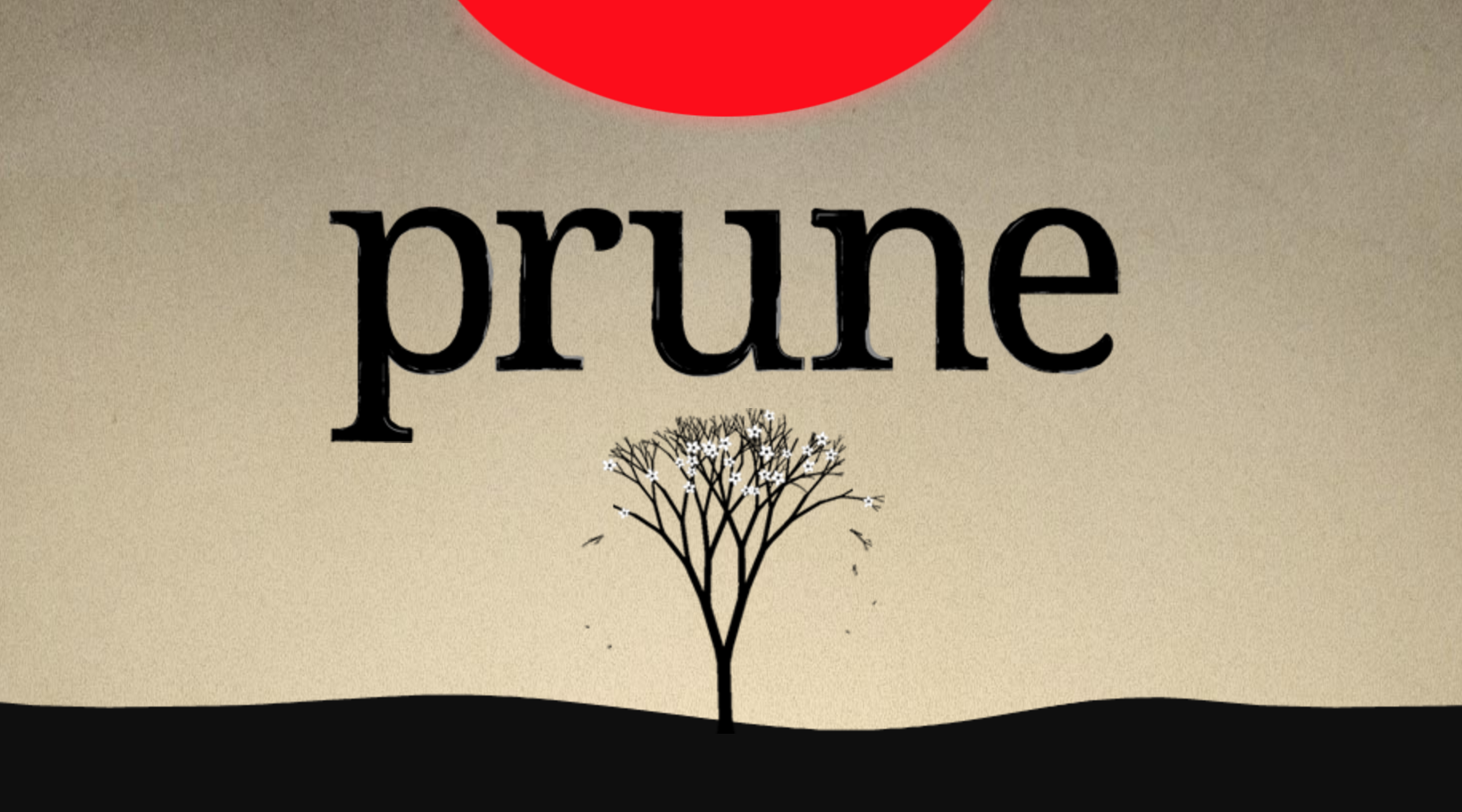 Prune, a game about trees